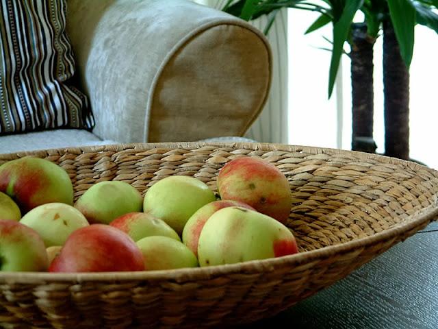 Polubić jesień  .......  Jak nie dać się chandrze, jesiennym szarugom i melancholii ?