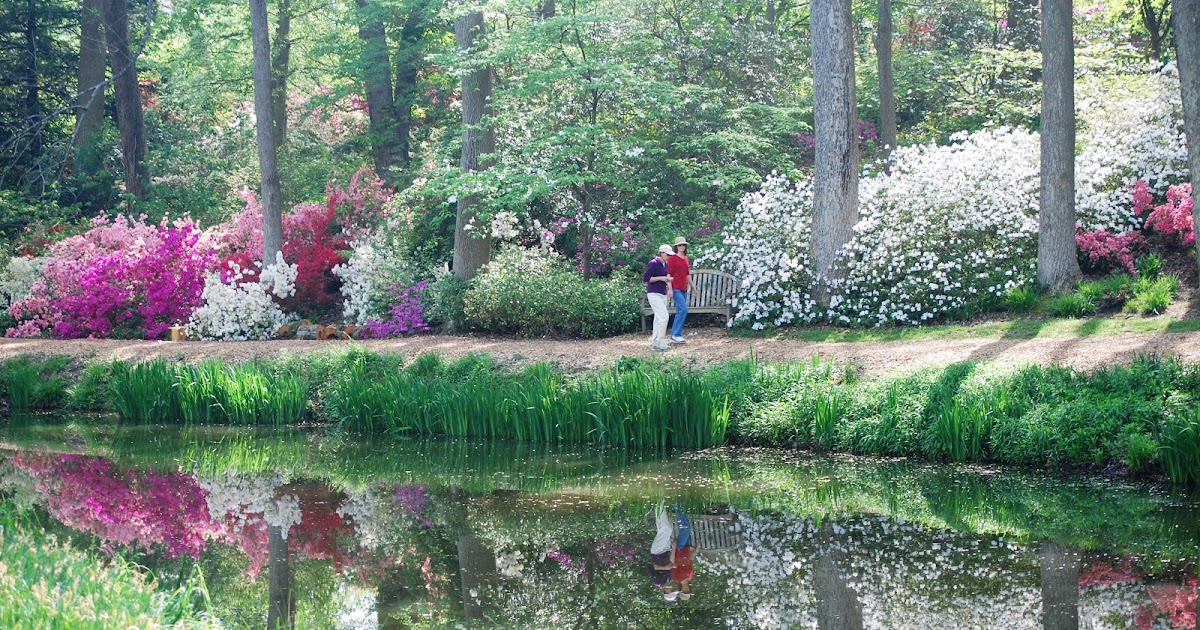 Pittsburgh Owl Scribe: Brookside Gardens - Year-Round Beauty in a ...