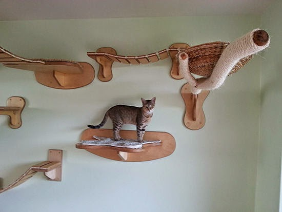 cat playing furniture ideas