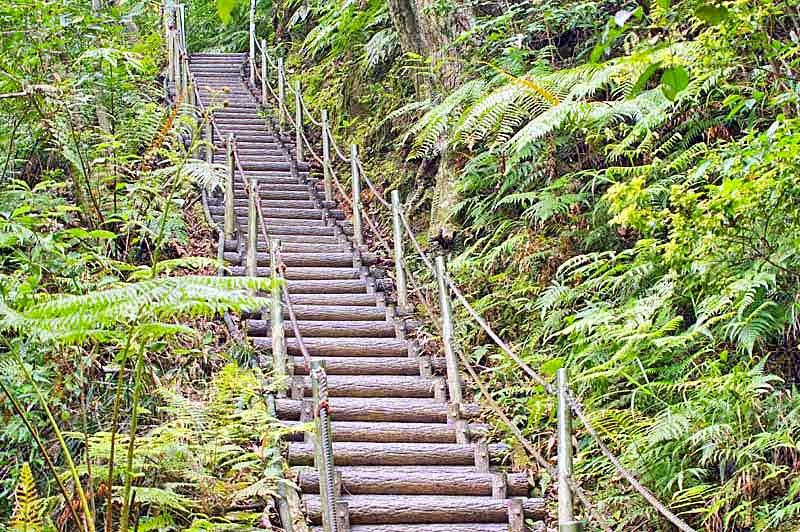 stairway, rope railings