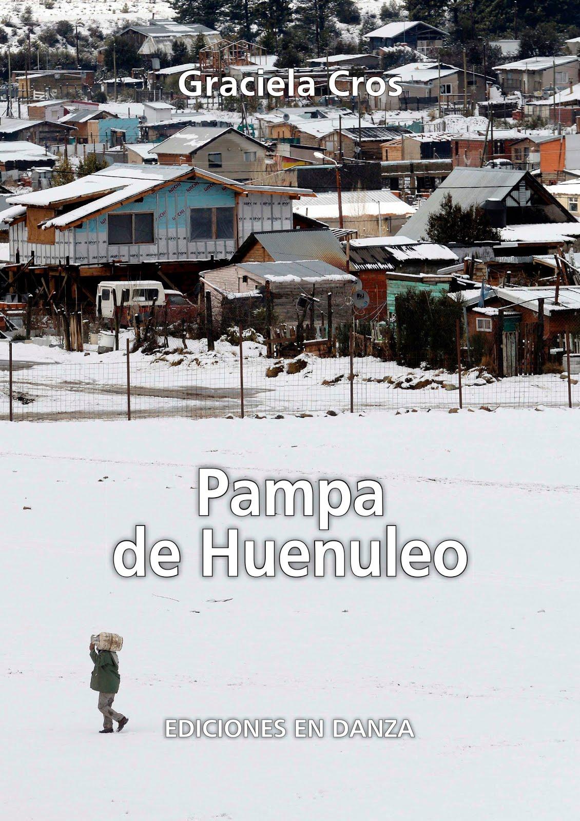"""Pampa de Huenuleo"""