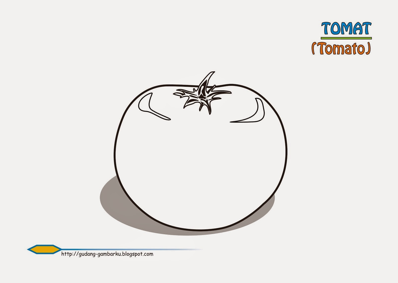 Gambar Mewarnai Tomat Gambar Mewarnai Lucu