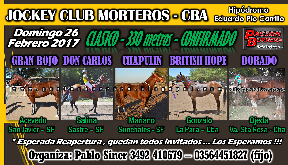 MORTEROS - 26 - 330