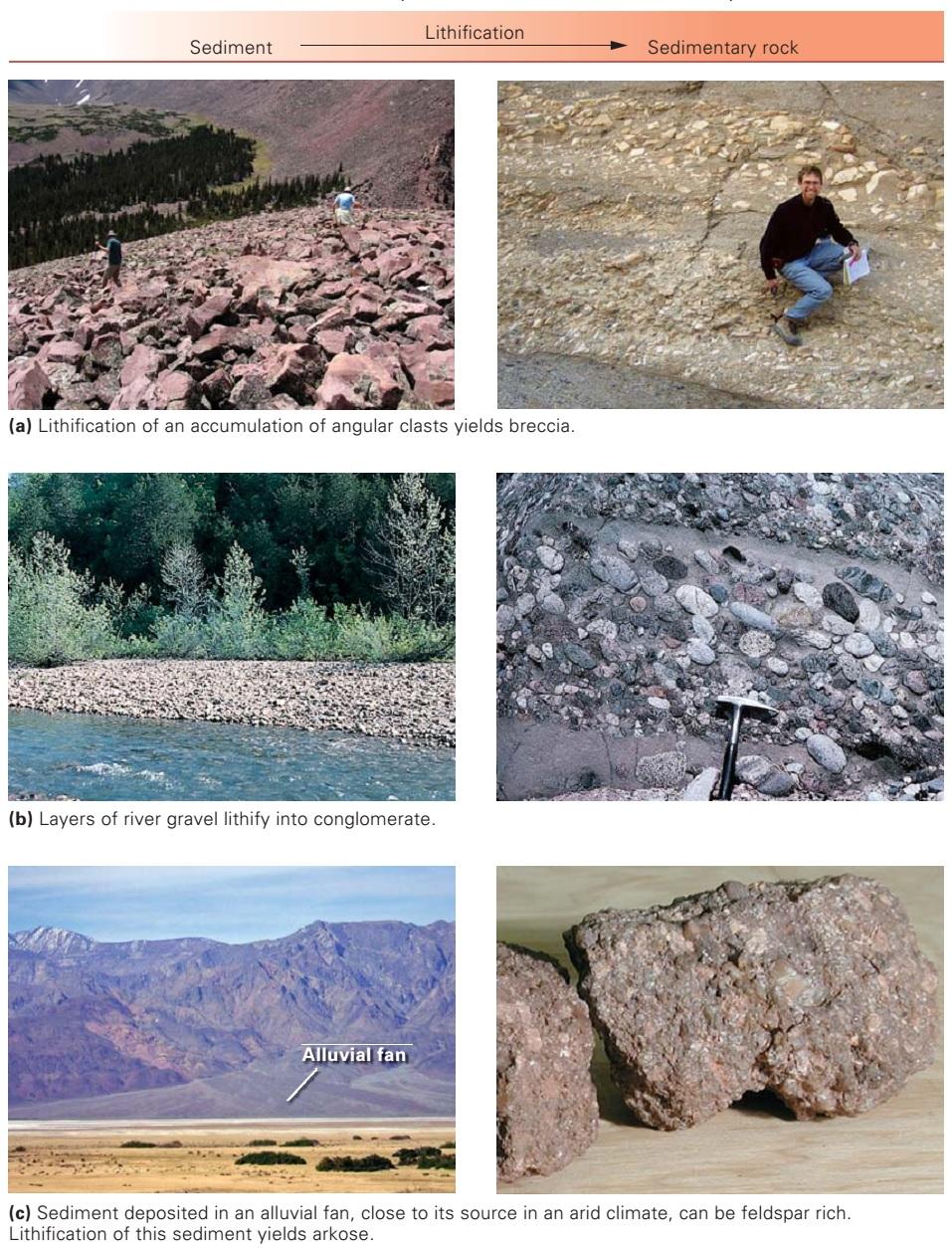 Classes of sedimentary rocks ~ Learning Geology