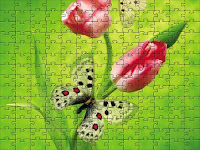 Tulips & butterfly puzzle