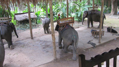 象乗り場から撮影(ルアンパバーン)