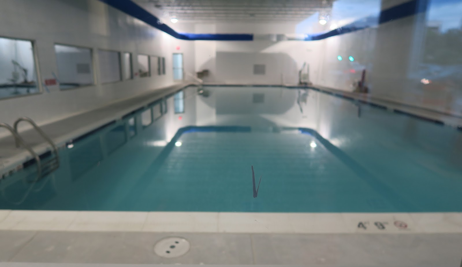 The Annandale Blog Swim School Opening In Ravensworth Shopping Center