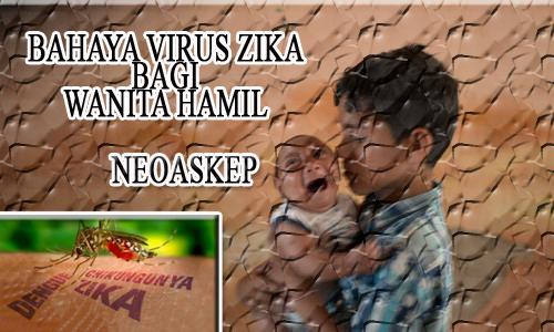 virus zika, virus wanita hamil