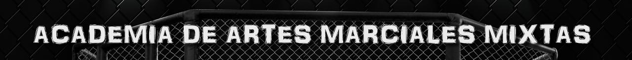 Academia de Artes Marciales Mixtas (MMA)
