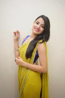 Ruksha Meer sizzling in saree 017.JPG
