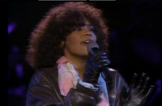 musica de los 80 whitney houston didn´t we almost have it all