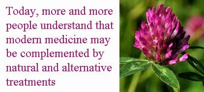 red clover natural alternative treatments
