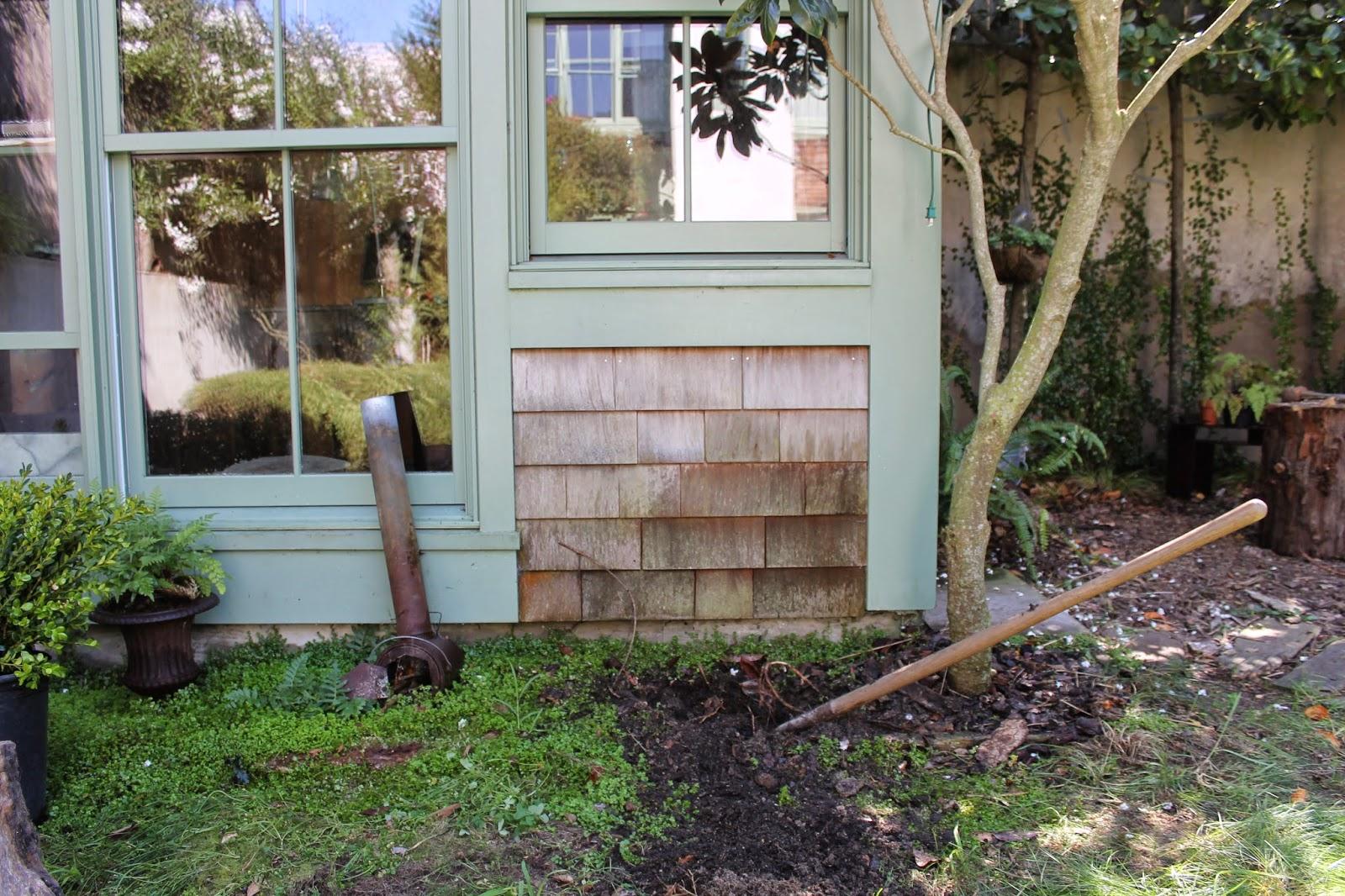 the shingled house garden toodling