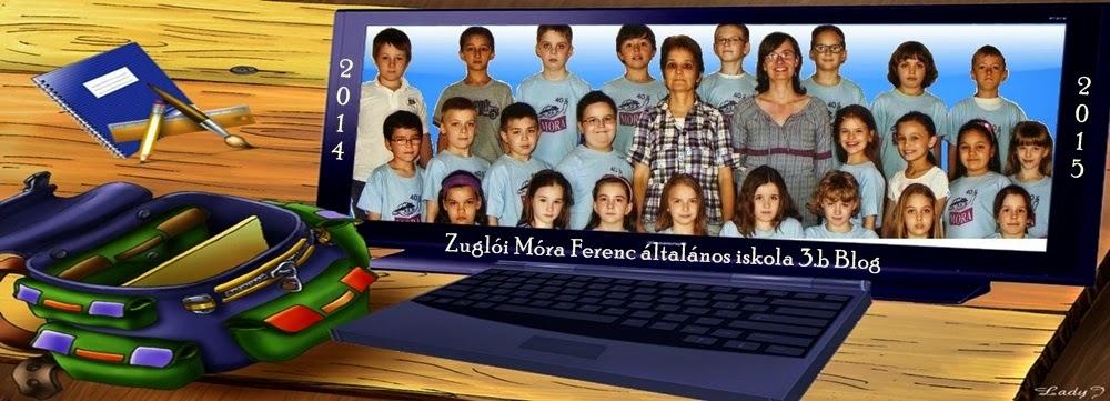 Móra Ferenc általános iskola 3.b