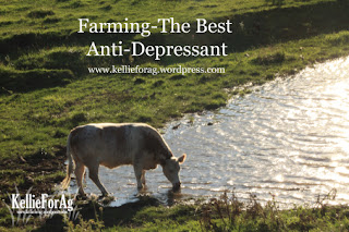 Country Fair Blog Party Blue Ribbon Winner - Kellie for Ag: Farming - The Best Anti-Depressant