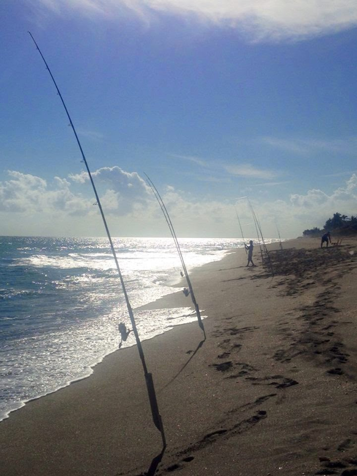 On foot angler from henry fred snook nook jensen beach for Snook nook fishing report