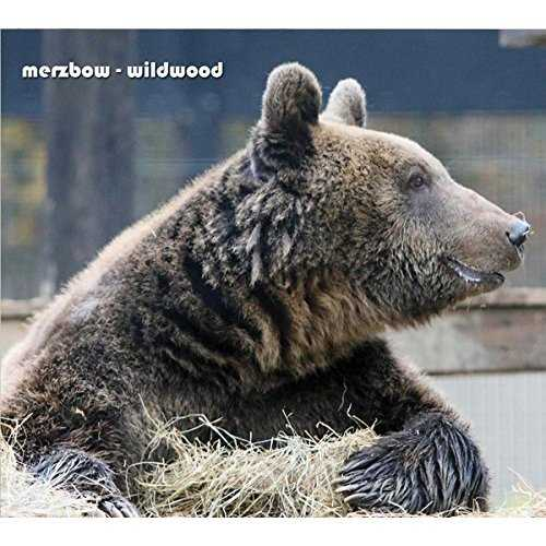 [Single] Merzbow – Wildwood (2015.07.24/MP3/RAR)