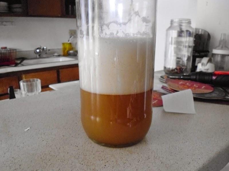 Yeast starter 2