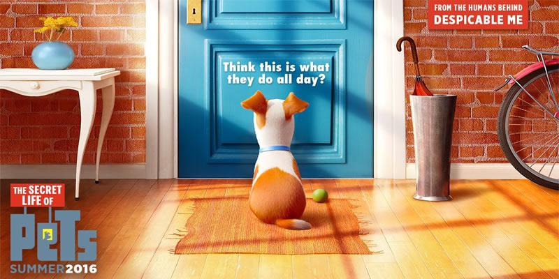 the secret life of pets movie 2016 movie previews