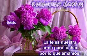 feliz martes con flores purpuras