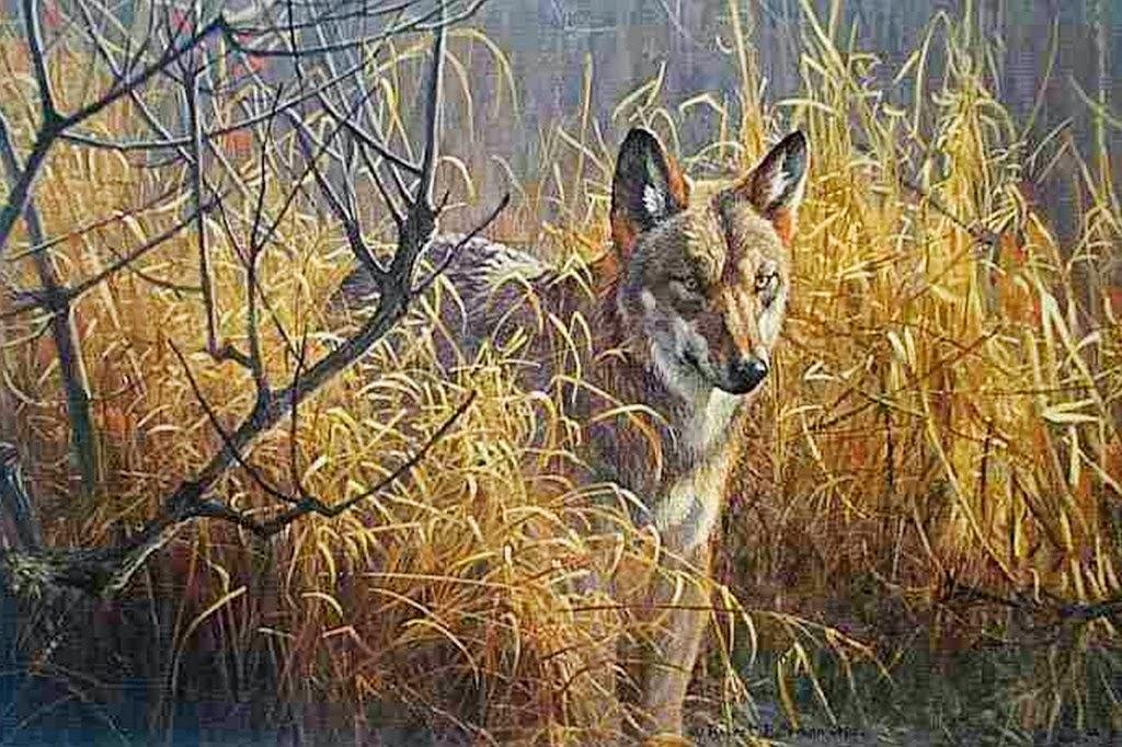 animales-pintados-en-realismo-al-oleo