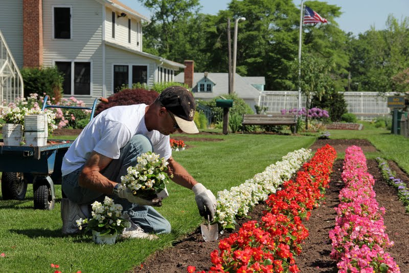 Low Cost Landscape Ideas low cost landscaping ideas to transform your garden - atlg