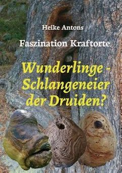 Heike Antons