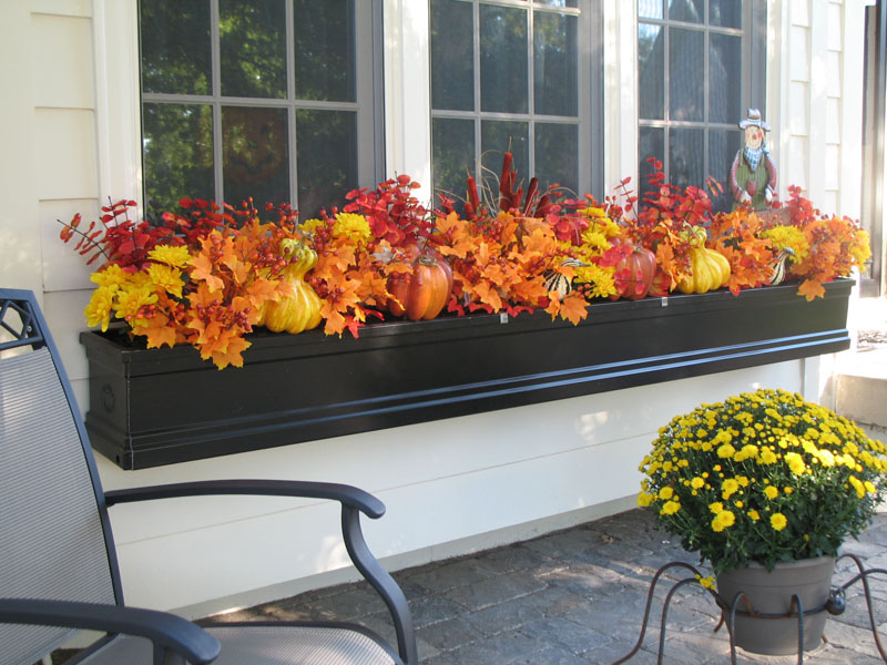 Calling it home fall window boxes - Window decorations for fall ...