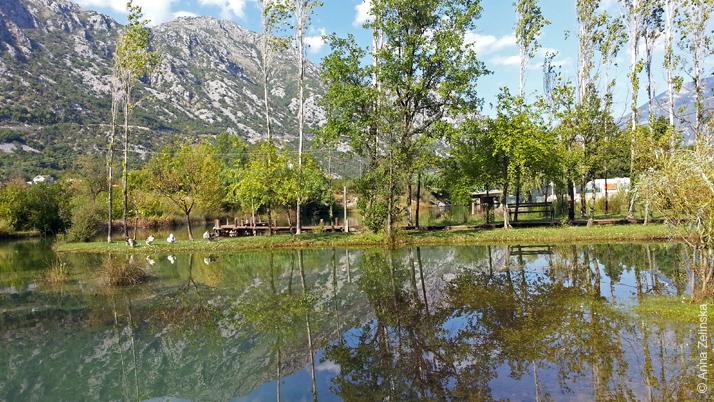 Красивый парк у подножья горы, Черногория