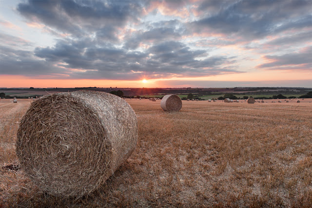Cotswold hay bales at sunset by Martyn Ferry Photography