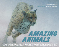 Amazing Animals - an amazing book!