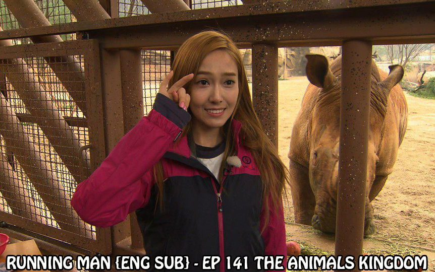 Download Running Man - Episode 141 (English Sub)