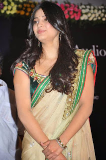 Shruti Hassan Saree Picture