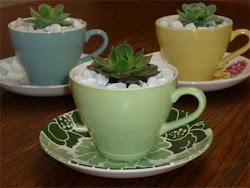 crown lynn cup planters
