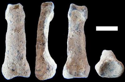 Pesquisadores descobrem na África 'mão moderna' mais antiga do mundo