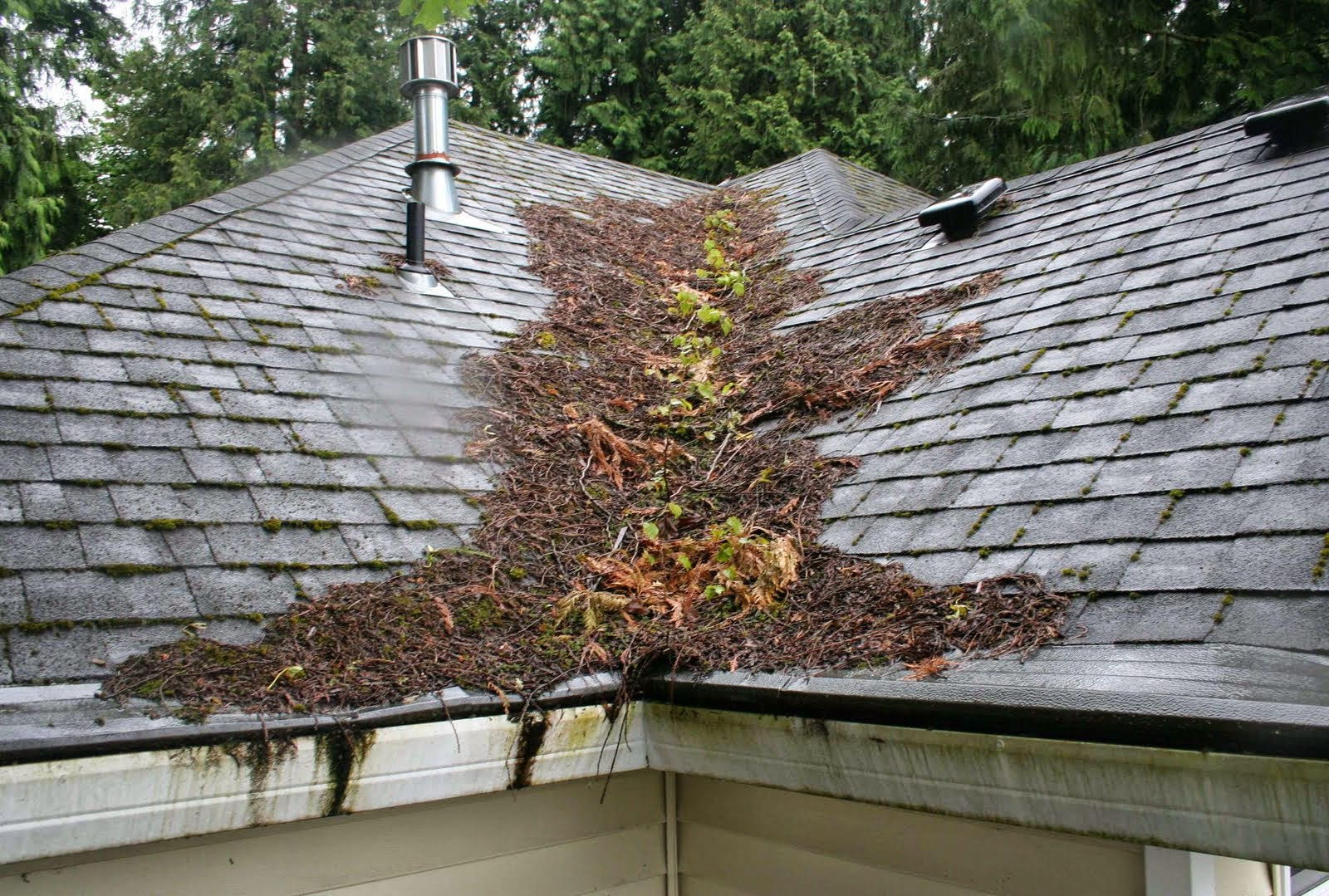 Prolong The Life Of Your Roof Aspen Home Improvements