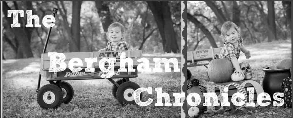 The Bergham Chronicles