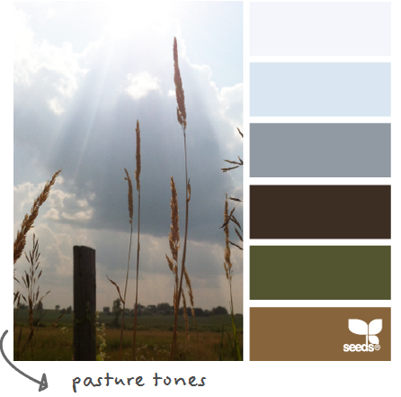 http://design-seeds.com/index.php/home/entry/pasture-tones2