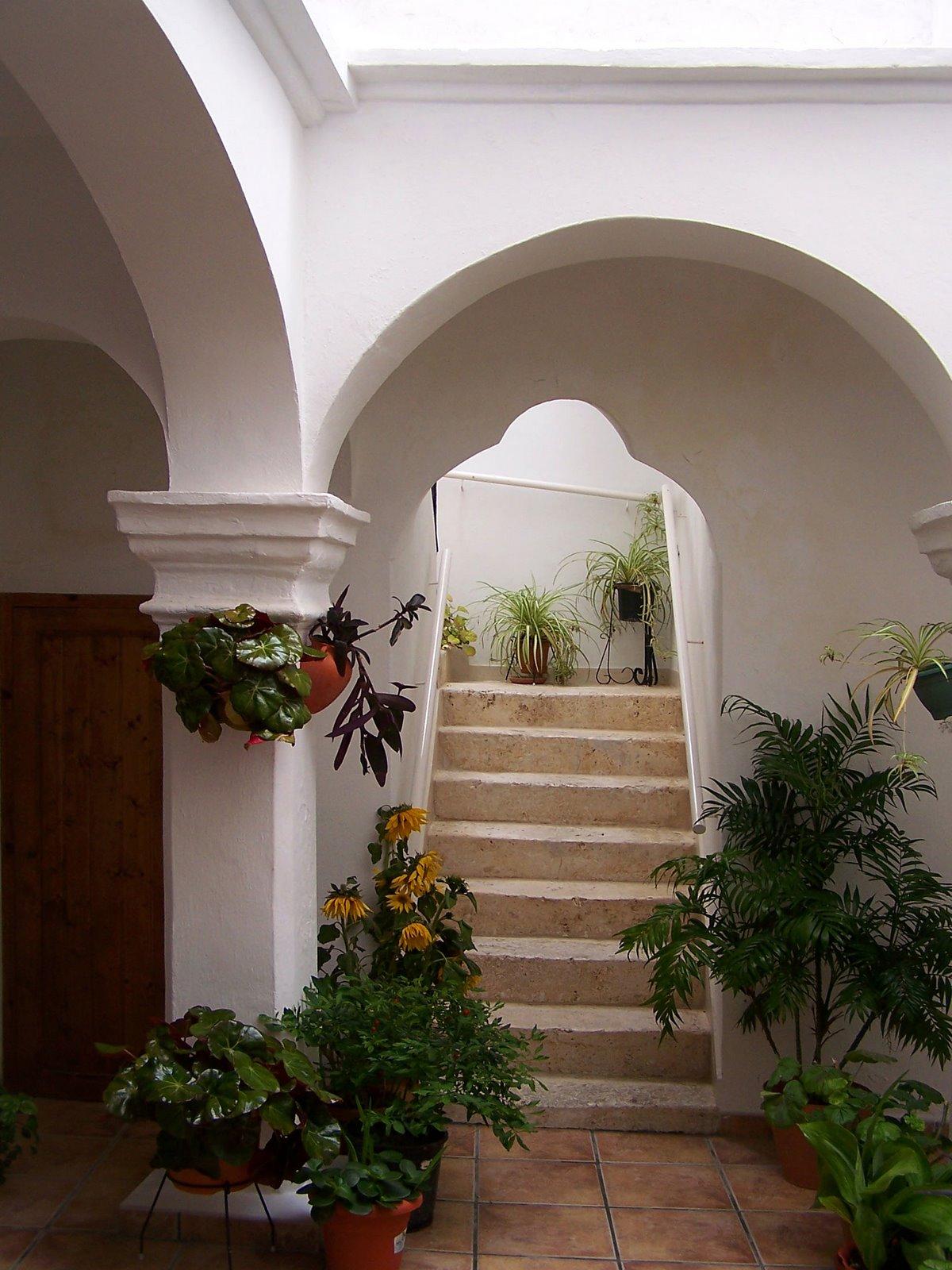 escaleras y jardines jpg