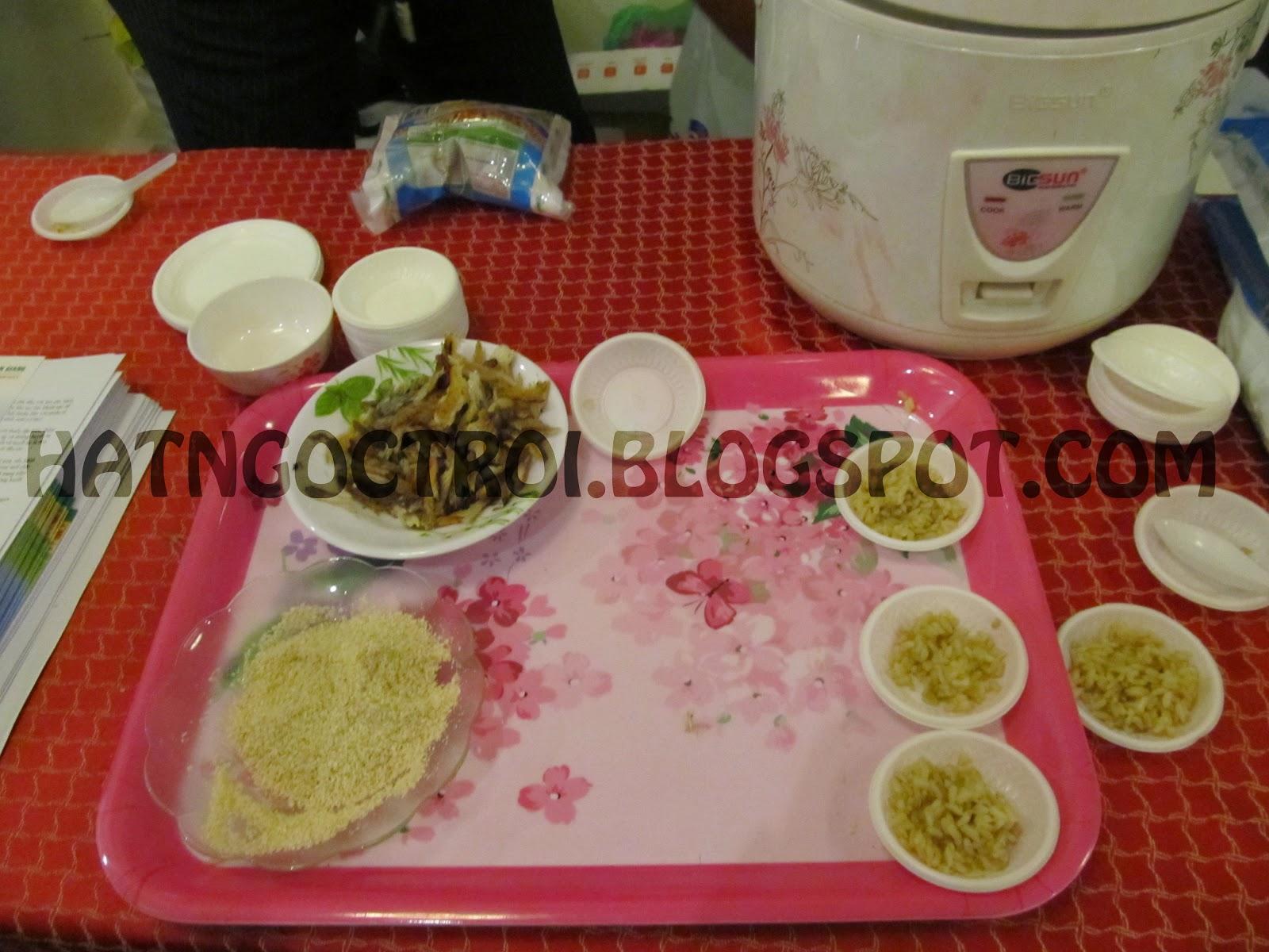Nấu cơm gạo mầm vibigaba như thế nào cho ngon?