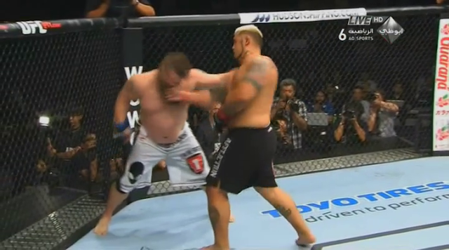 Mark Hunt KO uppercut punch Roy Nelson UFC Fight Night 52