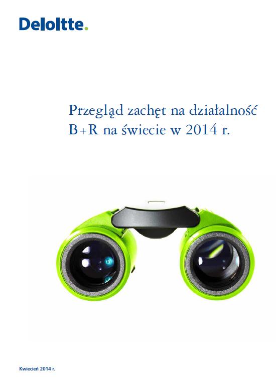 """Okładka raportu """"Przegląd zachęt na działalność badawczo-rozwojową (R&D) na świecie w 2013 r. """""""