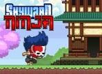 Skyward Ninja