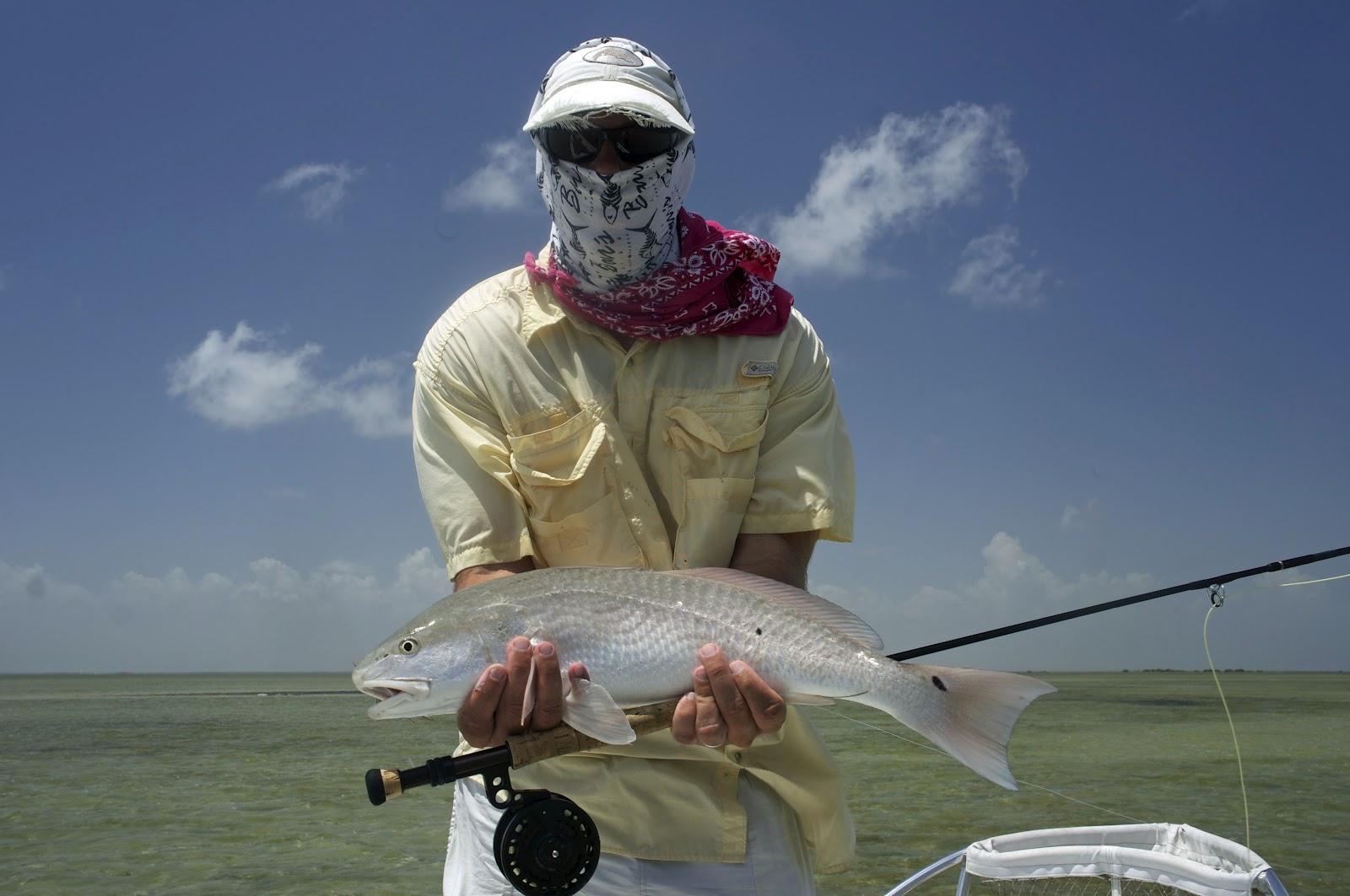 Captain scott sparrow 39 s blog enchanted morning for Arroyo city fishing