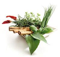 curarsi con le erbe erboristeria
