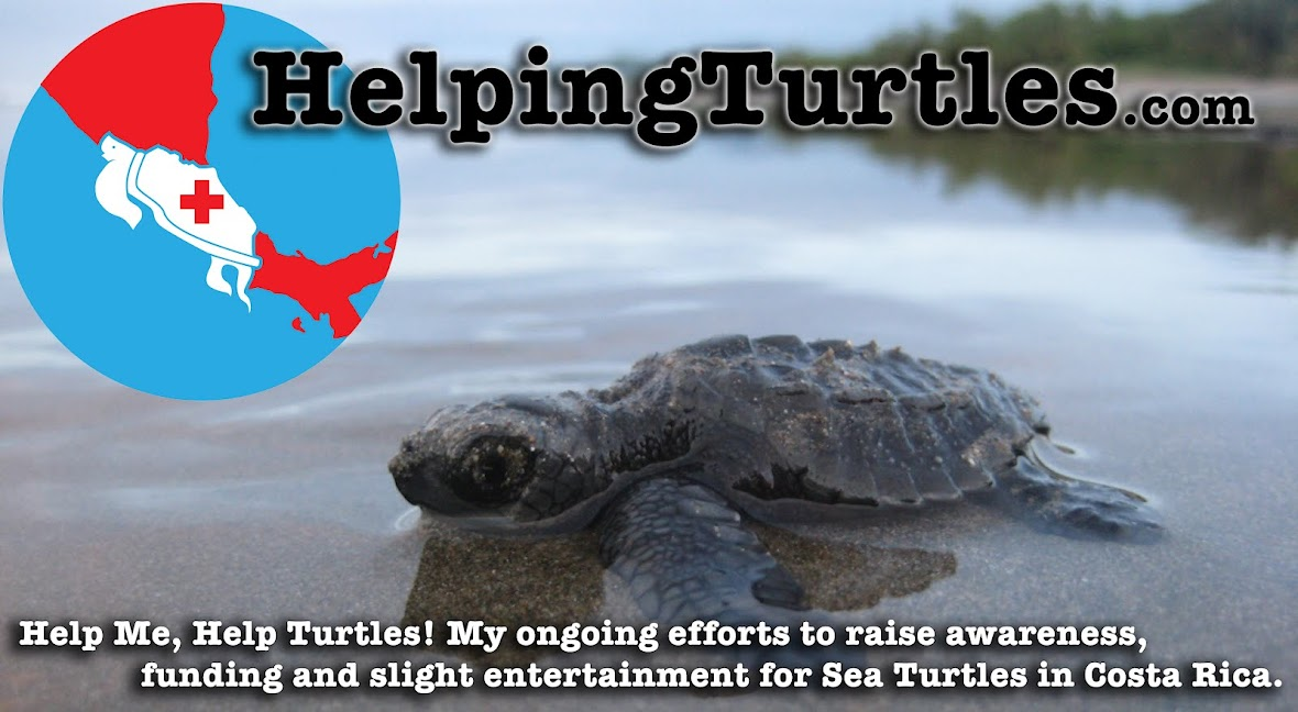 HelpingTurtles