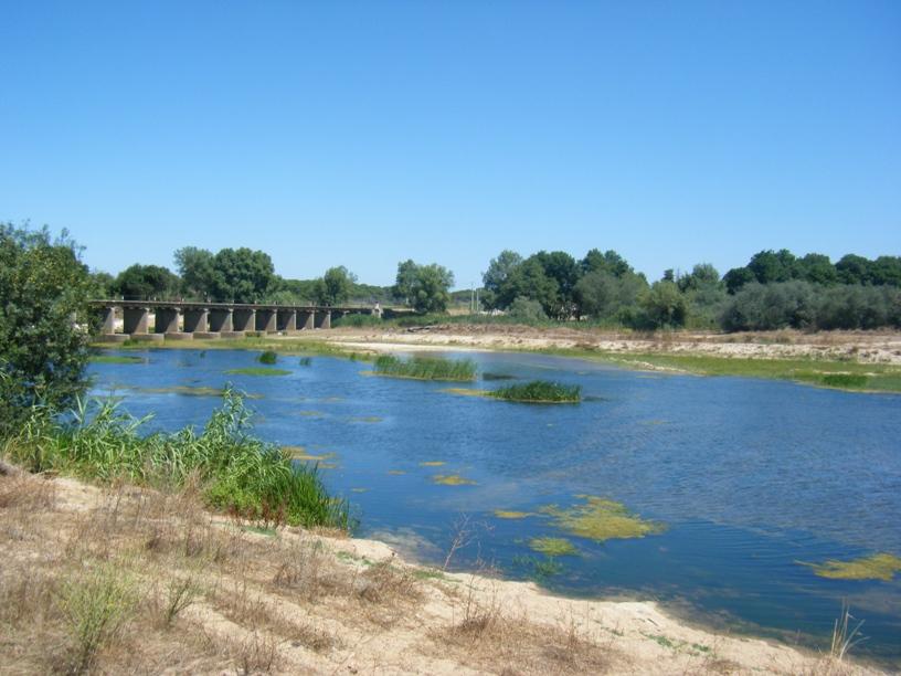 Rio Sorraia com água limpa