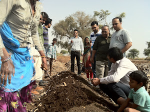 ORGANIC CULTIVATION PRACTISE IN JAIPUR