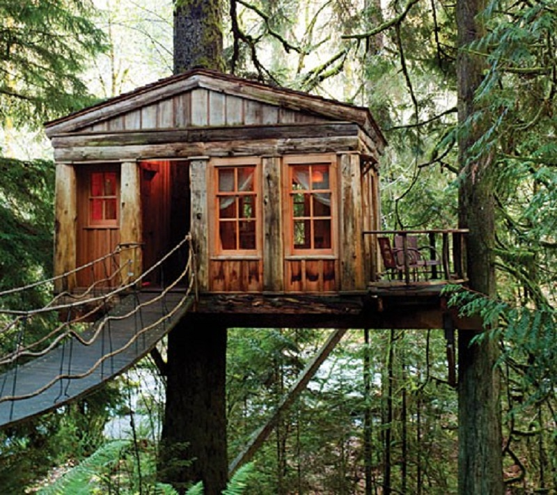 Top 20 Beautiful And Amazing Tree House WallpapersPics