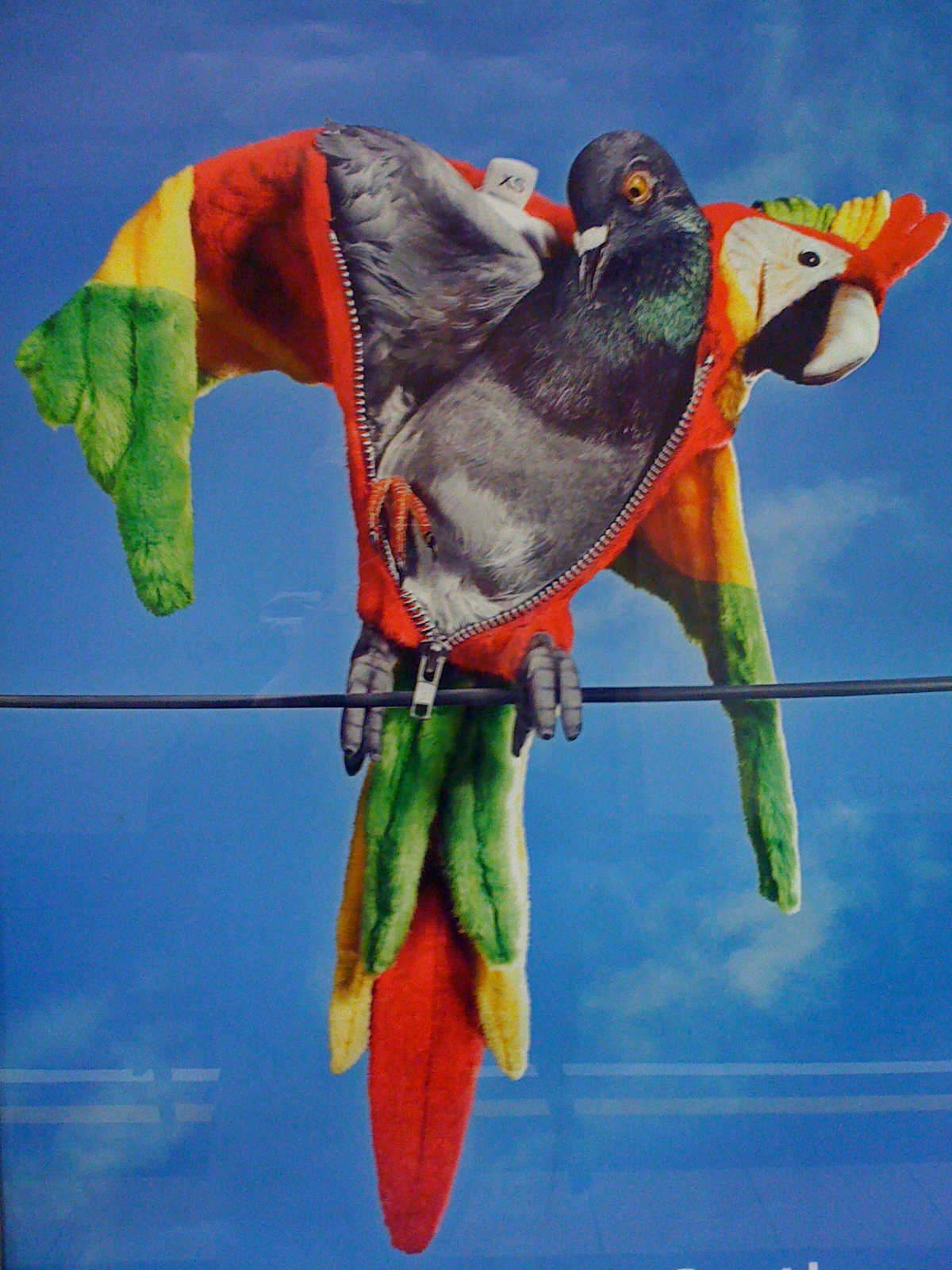 London Living: Carnival